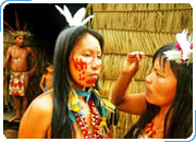 Экологическая прогамма по Бразилии Экологическая прогамма по Бразилии Туры в ARIAU AMAZON TOWERS 4* Туры на 2, 3 и 4 дня