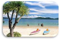 Описание: C:UsersDiamondDesktopКартинки для рассылкиВьетнам-5_1_~1.JPG