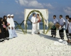 Описание: Свадьба в Sun Island Resort & SPA 5*