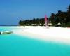 Описание: Свадьба в Mirihi Island Resort 5*